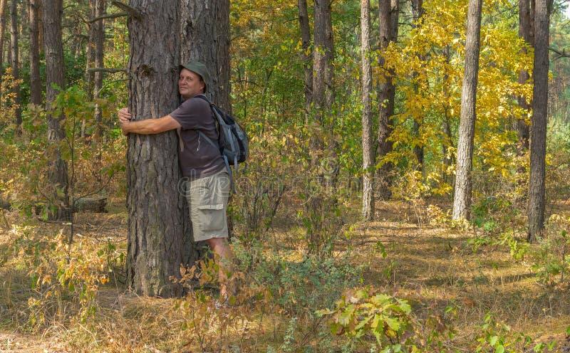 Wanderer lehnt sich zu einer beeing Aufladung des Baums durch positives nergy stockfoto
