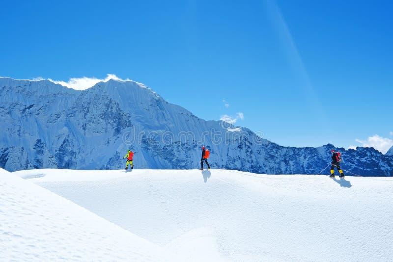 Wanderer mit Rucksäcken erreicht den Gipfel der Bergspitze Erfolgsfreiheit und Glückleistung in den Bergen Aktiver Sport lizenzfreie stockfotos
