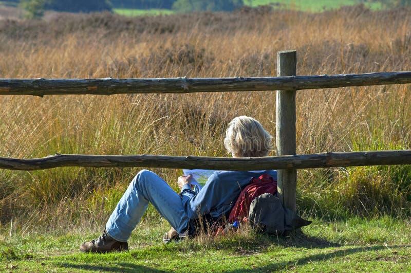 Wanderer steht im niederländischen Naturreservat in Mook still lizenzfreies stockbild