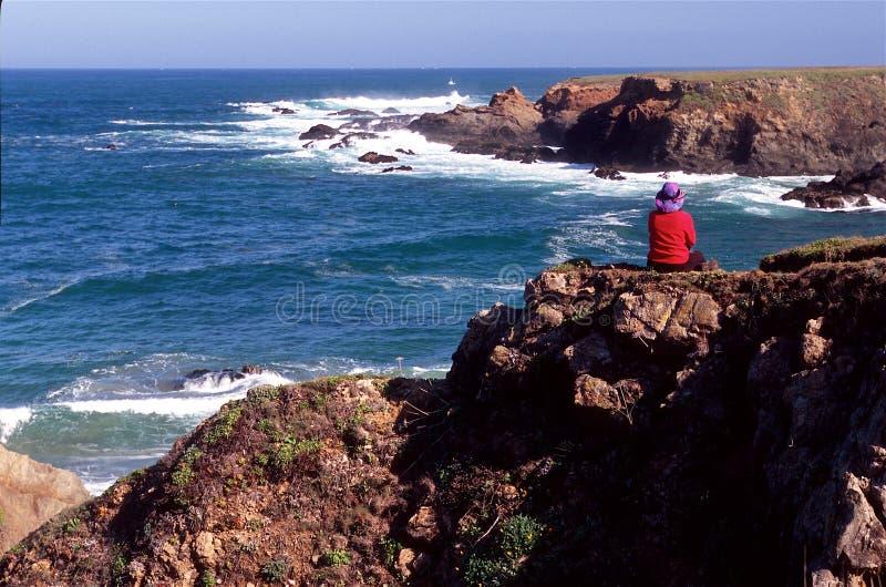 Wanderer und Ozean lizenzfreies stockbild