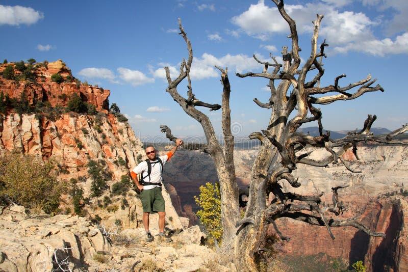 Wanderer Zion im Nationalpark lizenzfreie stockbilder