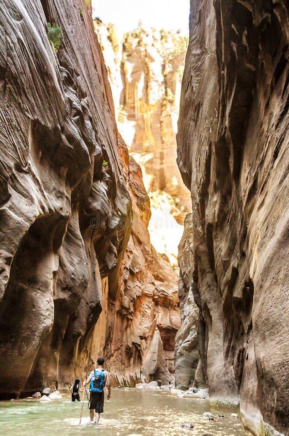 Wanderer in Zion National Park in Utah, USA lizenzfreies stockfoto