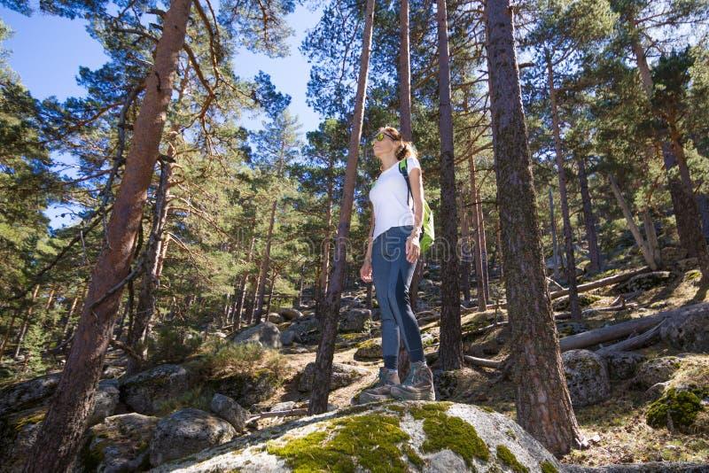 Wandererfrau, die auf einem großen Felsen im Wald steht lizenzfreies stockfoto