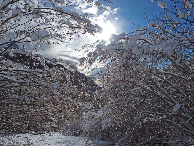 Download Wanderergesichtspunkt Nahaufnahmebeine Mit Den Schneeschuhen, Die Auf Schnee Gehen, Tauchen Auf Snowshoeing Auf Frischem Schnee Stockbild - Bild von nave, gesundheit: 106800331