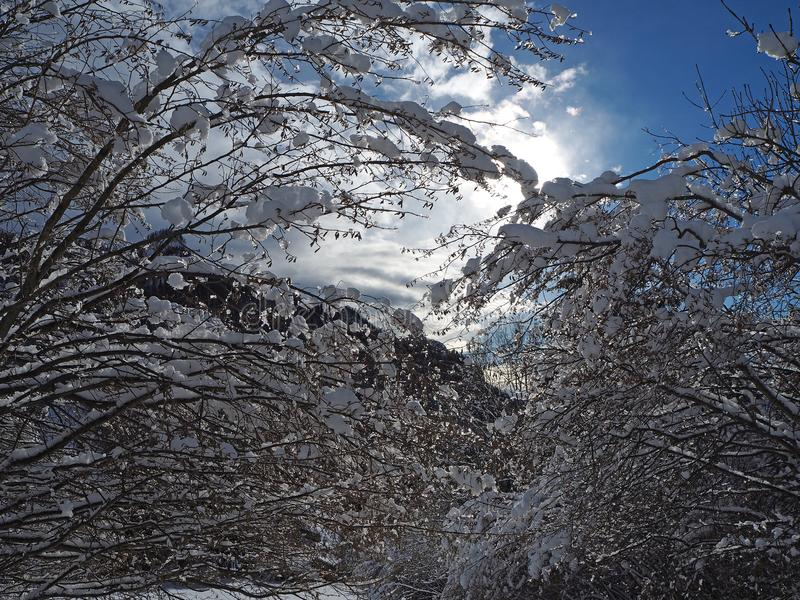 Download Wanderergesichtspunkt Nahaufnahmebeine Mit Den Schneeschuhen, Die Auf Schnee Gehen, Tauchen Auf Snowshoeing Auf Frischem Schnee Stockbild - Bild von draußen, bergsteigen: 106800349