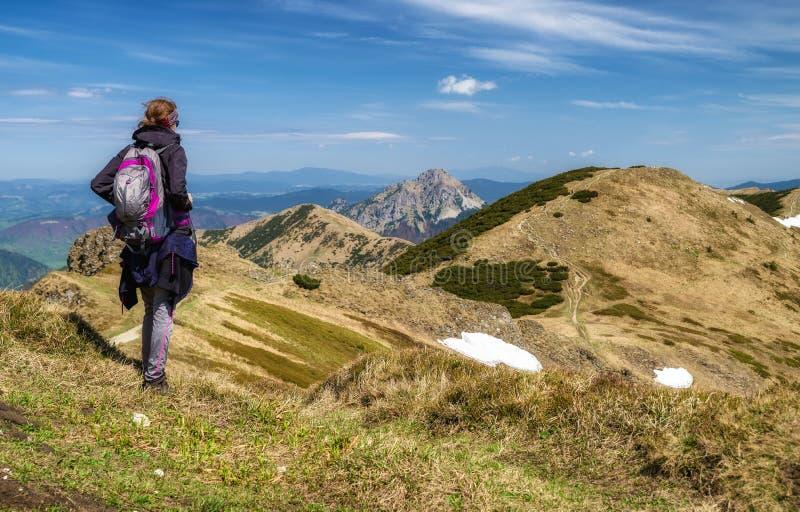 Wanderermädchen auf Hügel stockfotografie