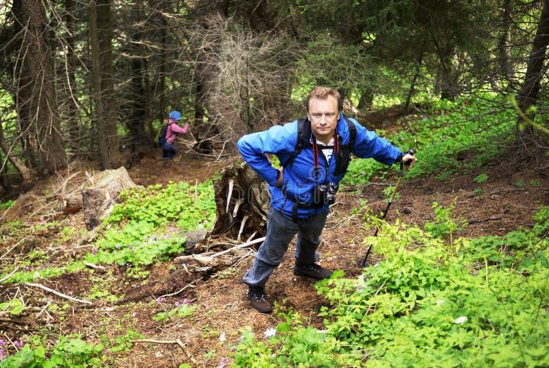 Wanderermann im Gebirgswald stockfotografie