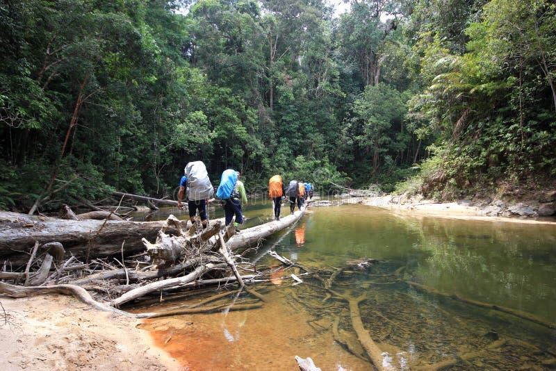 Wandergruppe des Mannes den Fluss kreuzend lizenzfreie stockbilder