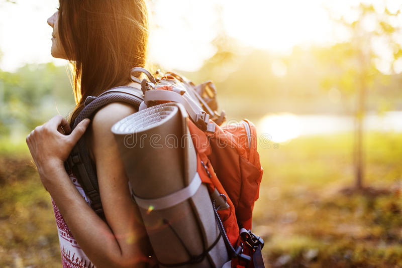 Wanderlust Pigeon Traveler Lifestyle Nature Trip Concept royalty free stock photos