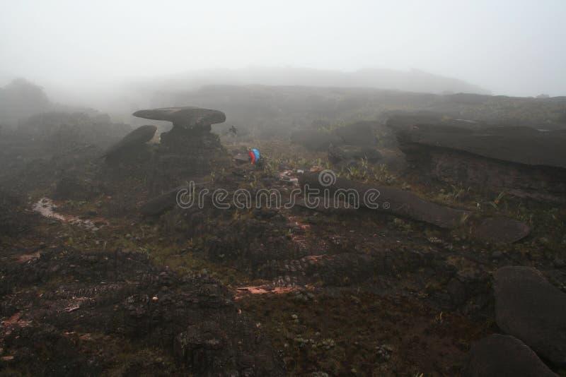 Wandern auf Roraima stockfotos