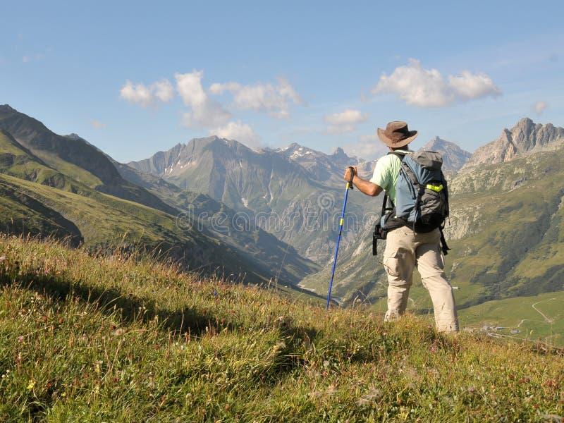 Wandern in den Alpen stockfotografie