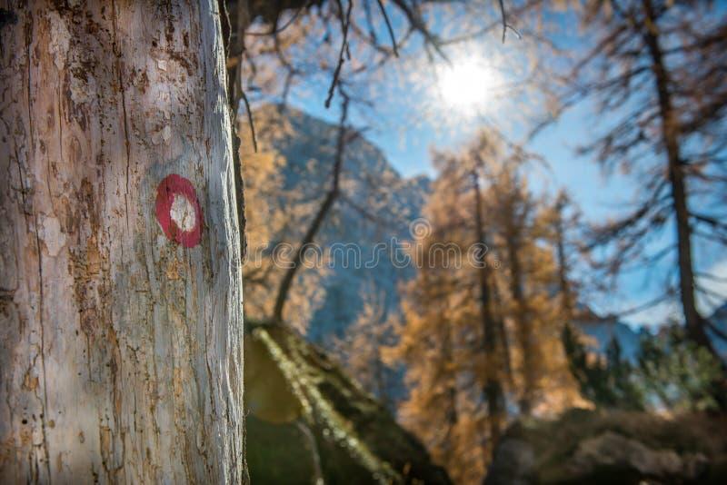 Wandern der Pfad-Markierung in den Bergen stockfotos