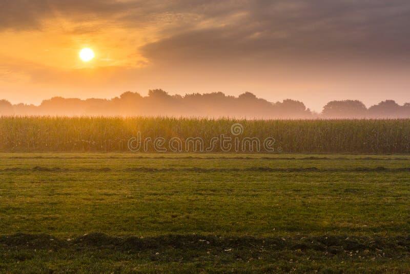 Wandern der Spur GR5 in der Benelux stockfotos