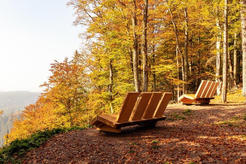 Wandern des Eindruckes im Schwarzwald entlang dem Roetenbach im Herbst, Deutschland Magischer Autumn Forrest Colorful Fall lizenzfreie stockfotografie