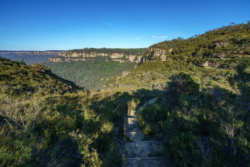 Wandern des großartigen clifftop Wegs, blaue Berge, Australien 1 stockfotografie