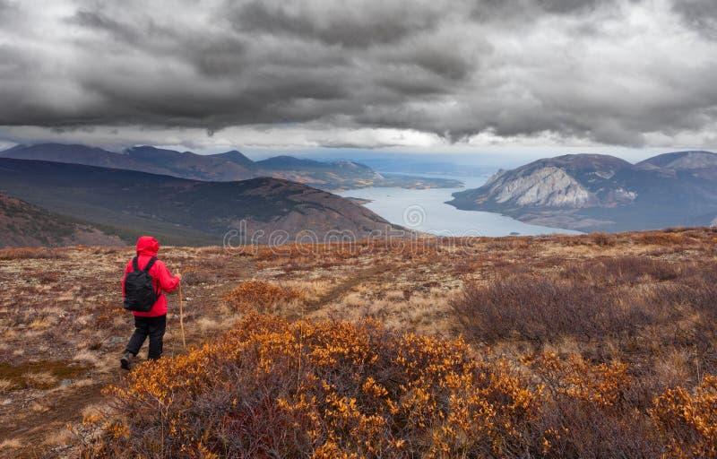 Wandern des nördlichen alpinen Tundraweges des regnerischen Herbstfalles lizenzfreie stockfotos