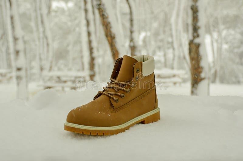 Wandern des Stiefels im Schnee lizenzfreie stockfotografie