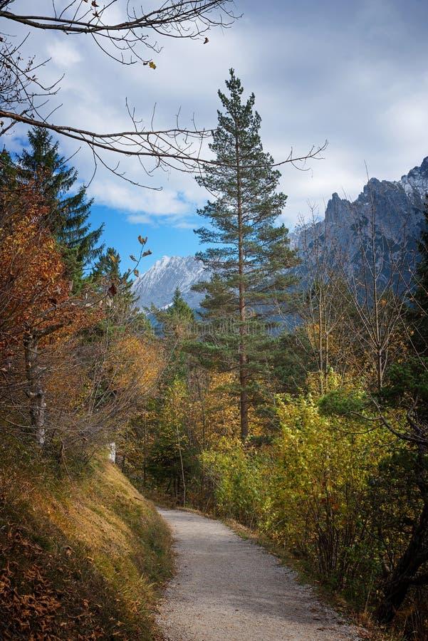 Wandern des Weges durch herbstlichen Gebirgswald stockbild