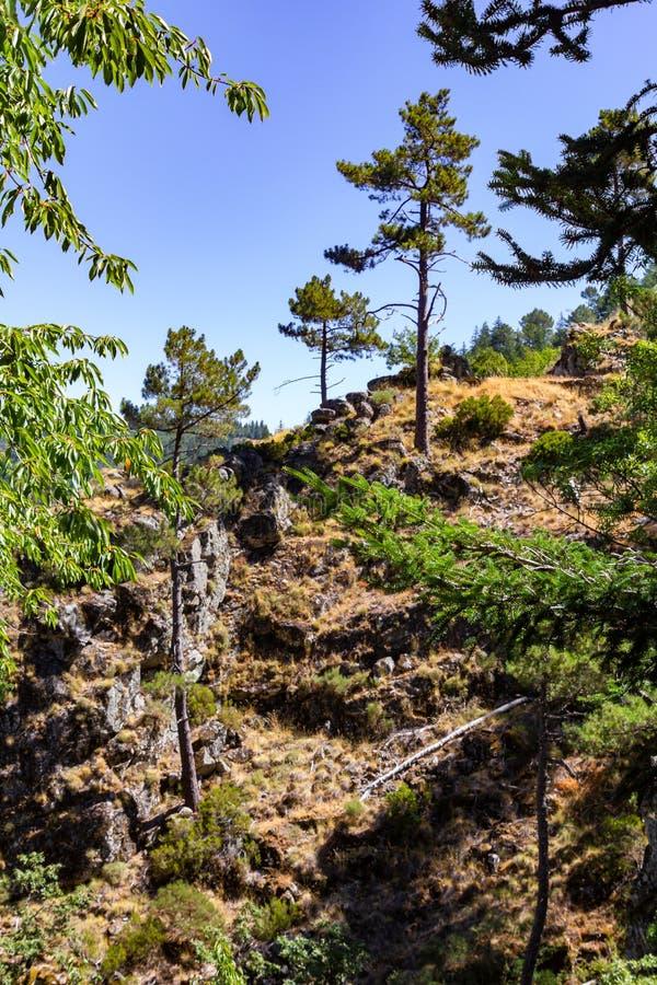 Wandern des Weges in Serra da Estrela nahe Manteigas, Portugal stockbilder
