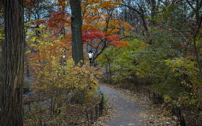 Wandern durch Central Park im Herbst lizenzfreie stockbilder