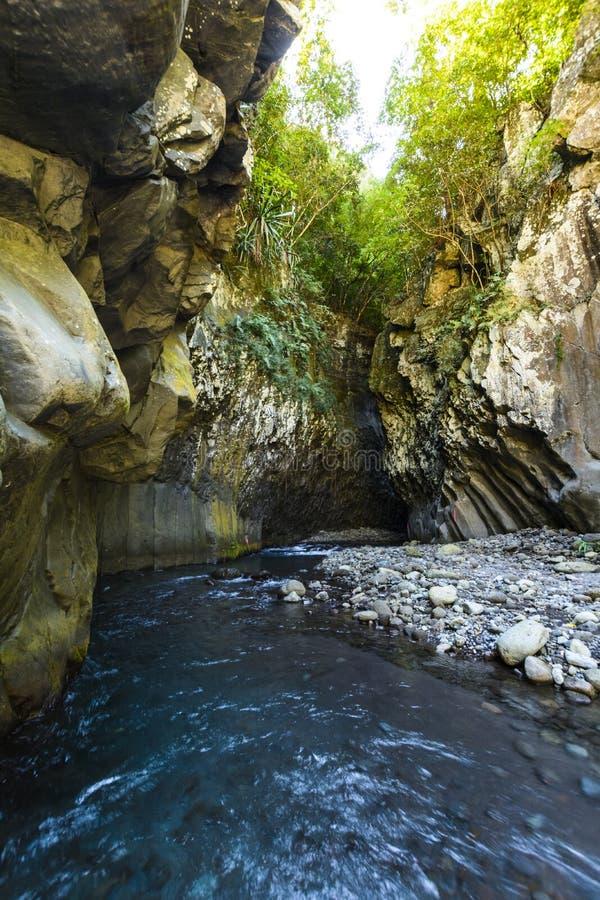 Wandern in einer Schlucht von Bras de La Plain bei Reunion Island stockfotos