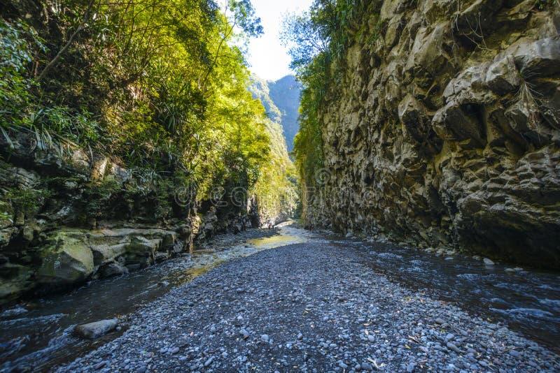 Wandern in einer Schlucht von Bras de La Plain bei Reunion Island lizenzfreies stockbild