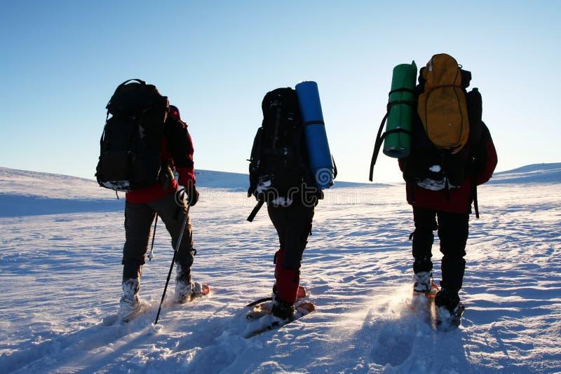 Wandern im Winter stockbilder