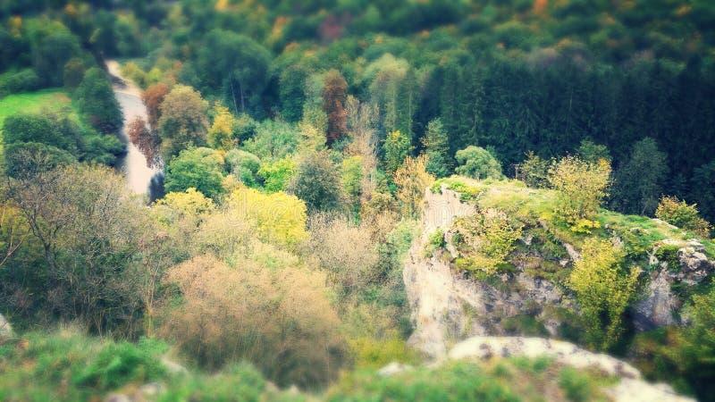 Wandern von Natur natuur Waldfelsen stockfotos