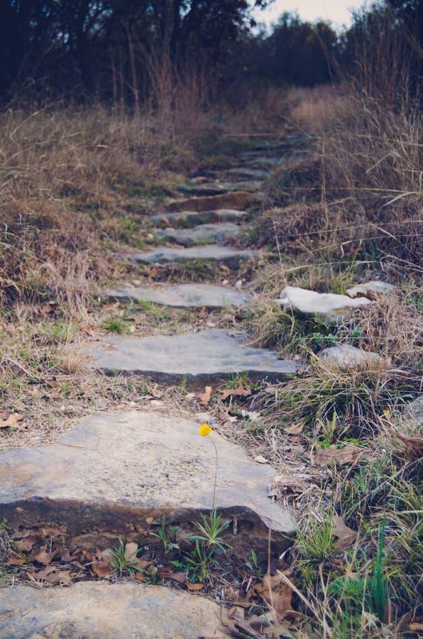 Wandernde Spur lizenzfreies stockfoto