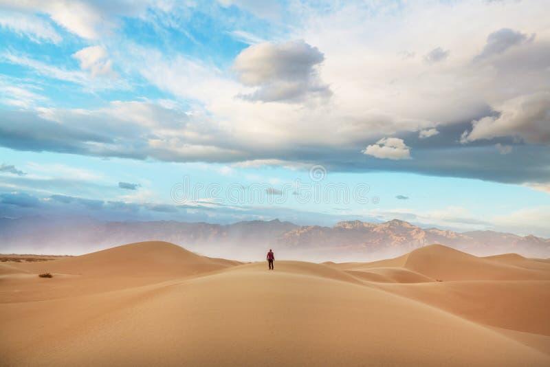 Wanderung in der Sandwüste stockfotos
