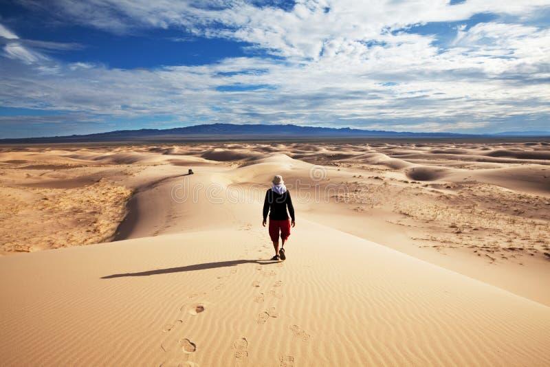 Wanderung in der Wüste lizenzfreie stockfotografie