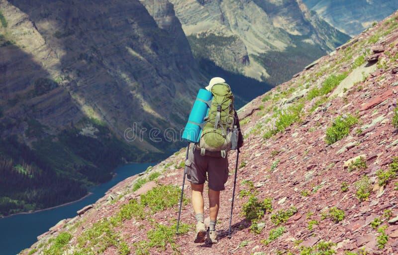 Wanderung im Gletscher lizenzfreie stockfotos