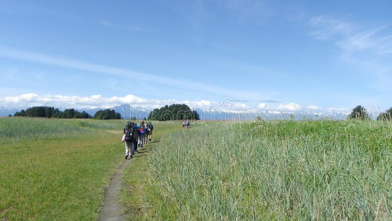 Wanderungs-Wiesenberge 6 der Gruppe wandernde lizenzfreie stockfotografie