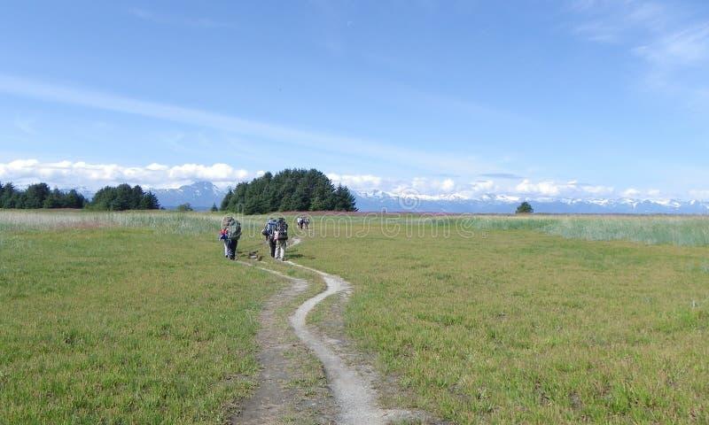 Wanderungs-Wiesenberge der Gruppe wandernde lizenzfreies stockfoto