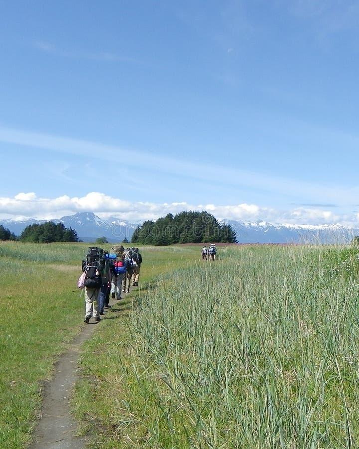 Wanderungs-Wiesenberge 4 der Gruppe wandernde stockfotos