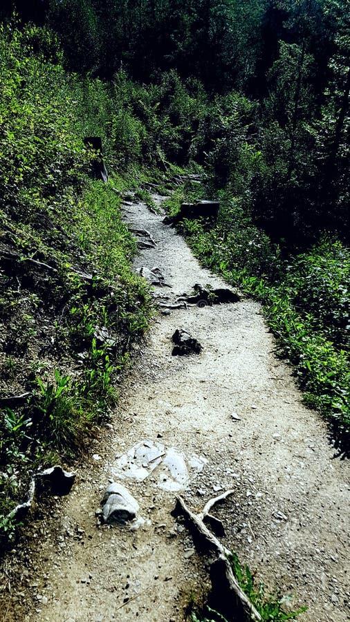 Wanderweg photos libres de droits