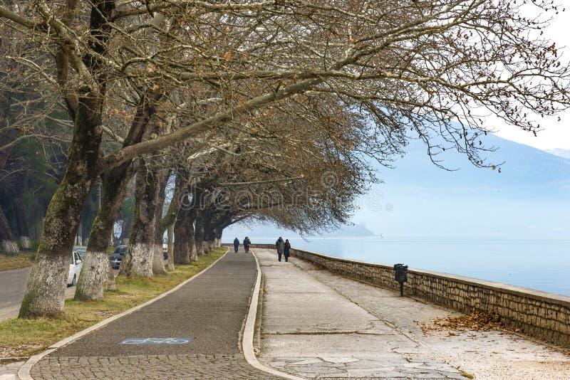 Wanderweg für Übung oder Fahrräder richteten mit schönen hohen Bäumen im See Pamvotis, Ioannina-Stadt aus Griechenland stockbild