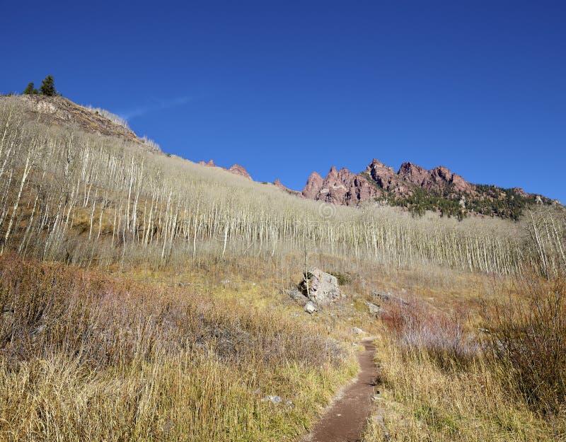 Wanderweg in kastanienbrauner Wildnis Bell Snowmass, USA stockbild