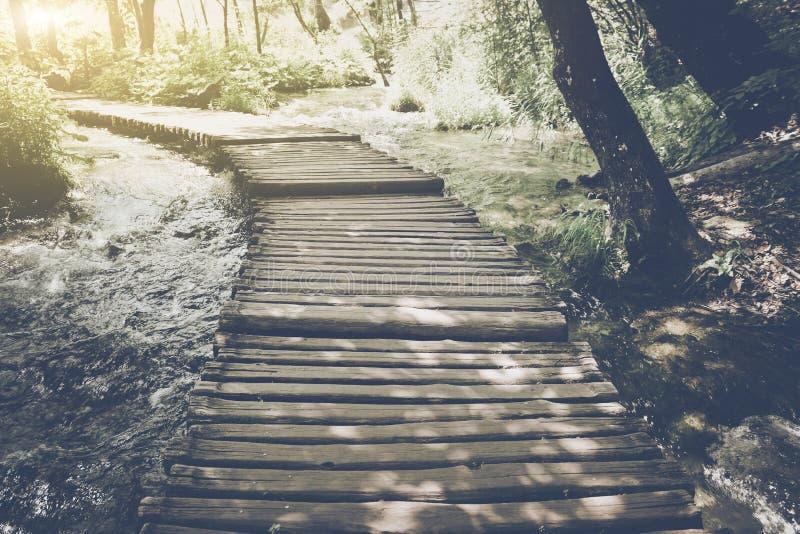 Wanderweg mit Sonnenlicht lizenzfreie stockfotografie