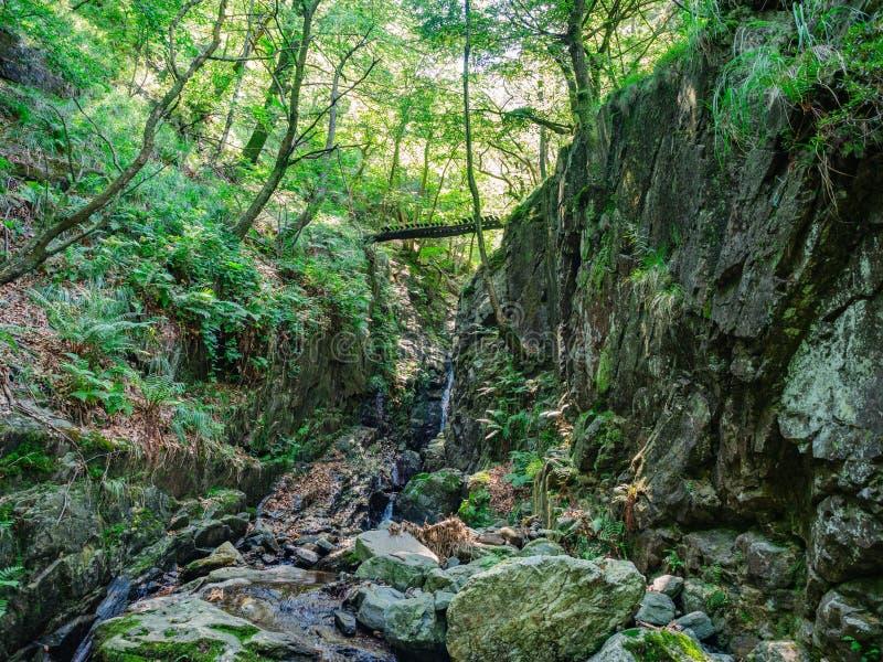Wanderweg in Nationalpark Valgrande stockfotografie