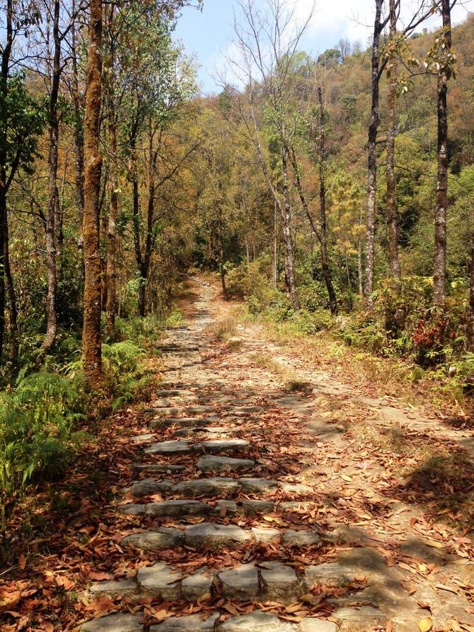 Wanderweg in Nepal stockfotos