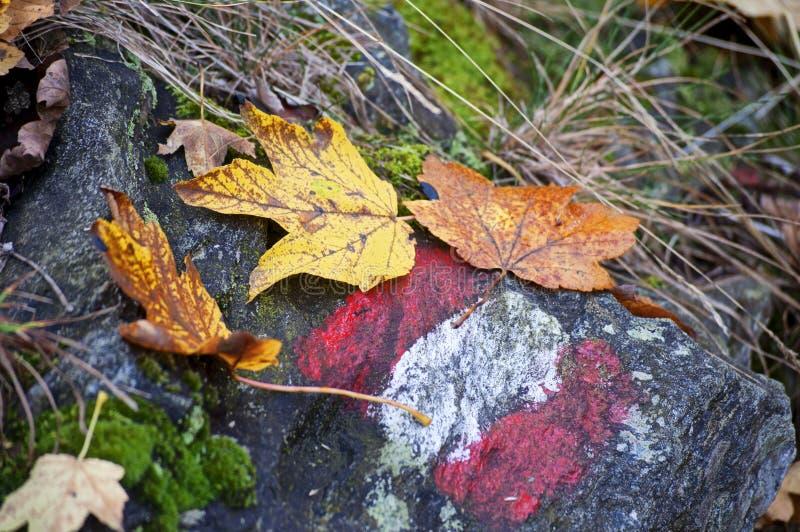 Wanderweg unterzeichnen herein Herbst stockbilder