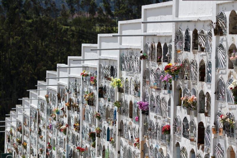 Wandgräber in Ecuador stockbild