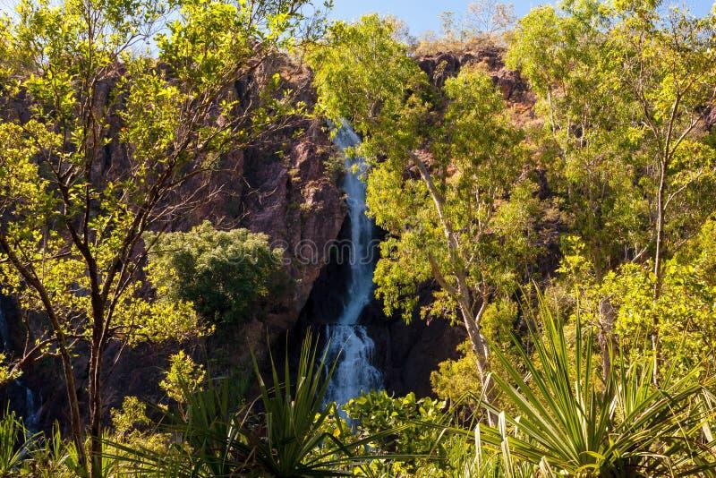 Wangi秋天,利奇费尔德国立公园,北方领土,澳大利亚 库存图片
