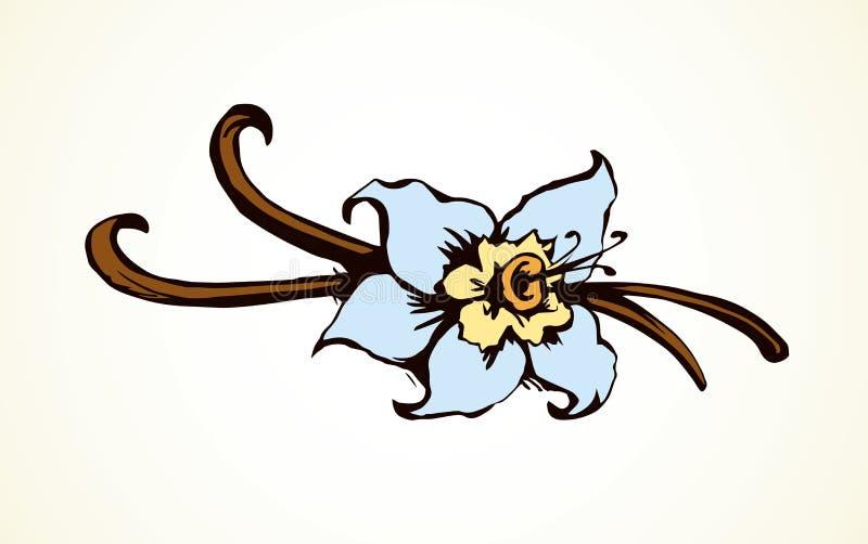 wanilia rysuje tła trawy kwiecistego wektora royalty ilustracja