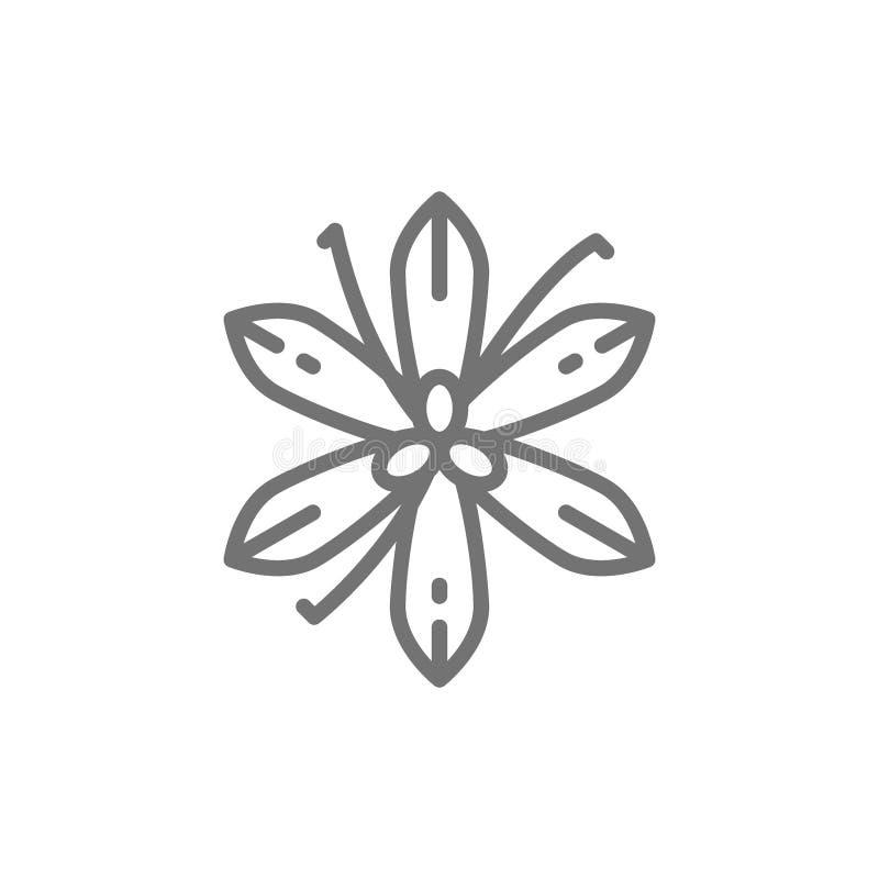 Wanilia, szafran, pikantności kreskowa ikona ilustracja wektor