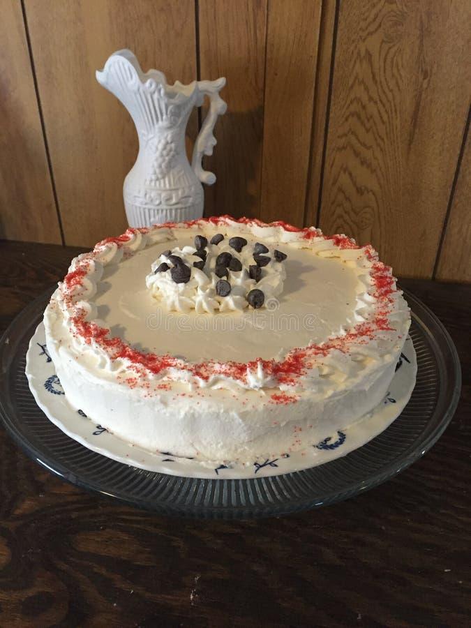 Wanilia tort z czekoladowymi układami scalonymi obrazy royalty free