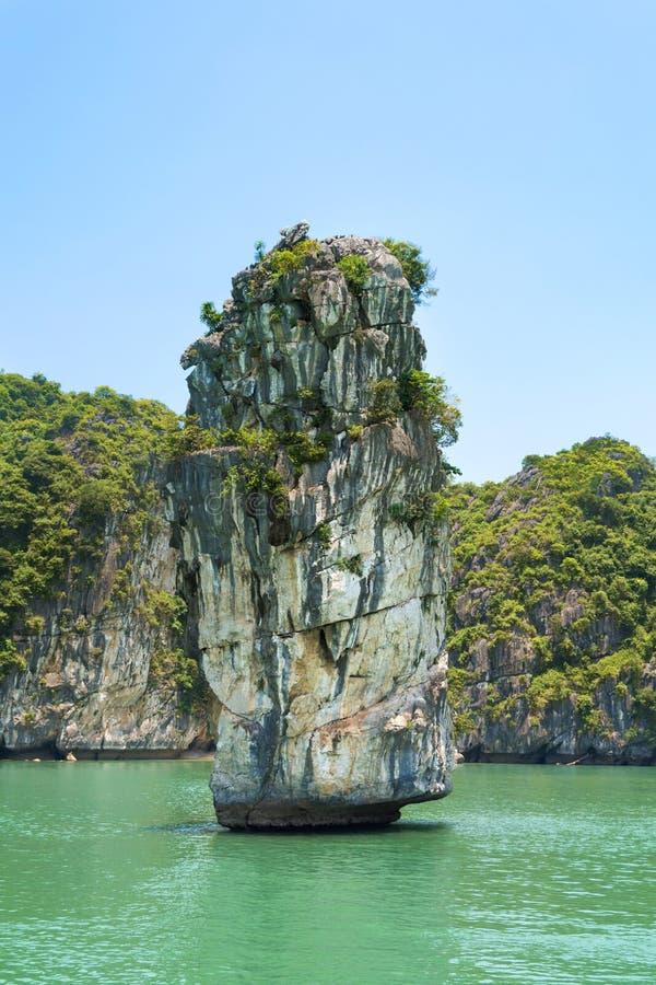 Wapień kołysa i spokojny morze Halong zatoka, Wietnam zdjęcie stock