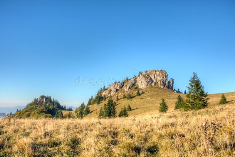Wapnia szczyt wymieniał Królewiątka Well - Wielki Sistani obrazy stock