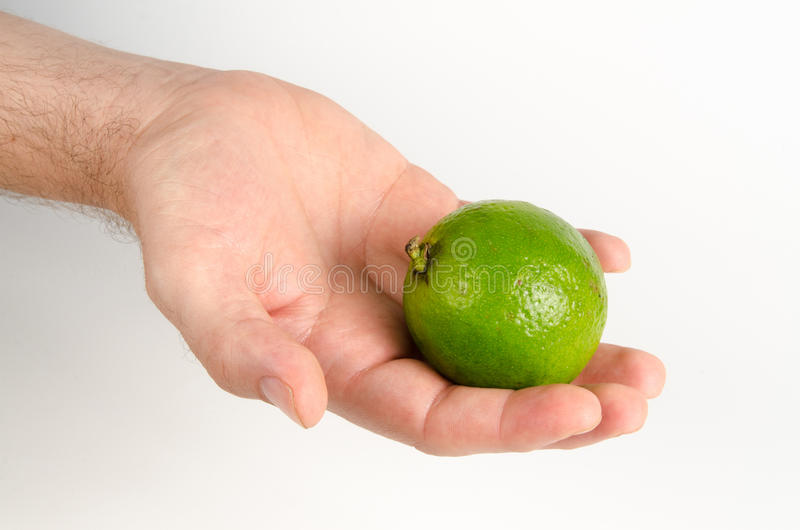 Download Wapno owoc zdjęcie stock. Obraz złożonej z jujitsu, cytrusy - 57669692